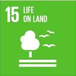 15 sustainability